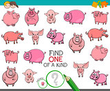 find one of a kind with funny pig characters