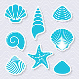 Simple vector sea shells and starfish