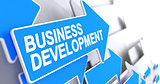 Business Development - Inscription on the Blue Pointer. 3D.