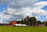 Red Barn on Green Pasture in Oregon