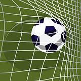 Soccer ball falls into net of goal
