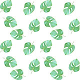Seammles Pattern. Colorful naturalistic green leaves on branch. Vector Illustration
