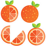 Oranges orange slice, half cut orange and front view of cut ripe orange. Set of vector illustration.