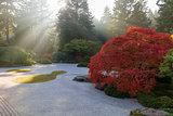 Sun Rays over Japanese Flat Sand Garden in Autumn