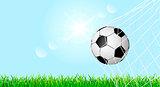Soccer ball on a green grass lawn 1
