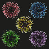 Fireworks set on a black background