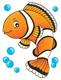 Clownfish topic image 1