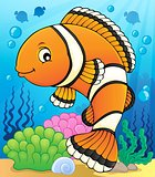 Clownfish topic image 2