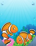 Clownfish topic image 5