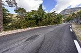 Asphalt road between forests