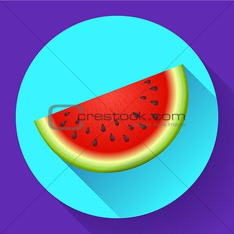 watermelon icon vector