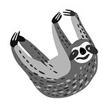 Vector design with a a cute and friendly Three-toed sloth