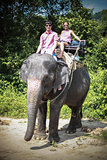 Young couple tourists rides on elephants in elephant farm in Thailand. Attractions for tourists.