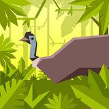 Flat geometric jungle background with Emu