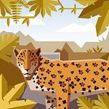 Flat geometric jungle background with Jaguar