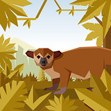 Flat geometric jungle background with Kinkajou