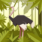 Flat geometric jungle background with Ostrich