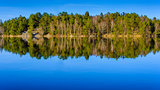 Forest reflection as seen in  lake in Gothenburg Sweden
