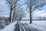 Country road through a wintry landscape