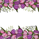 Square frame with tulips and herbs on white. Floral pattern for your wedding design, floral greeting cards, posters.
