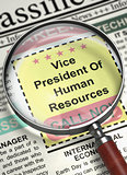 We're Hiring Vice President Of Human Resources. 3D.