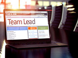 Team Lead Job Vacancy. 3D.
