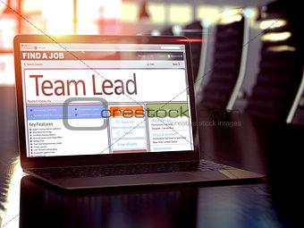 Team Lead Job Vacancy. 3D.