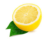 Half lemon citrus fruit isolated