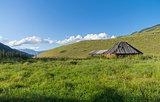 Abandoned cattle-ranch. Altai Mountains, Russia.