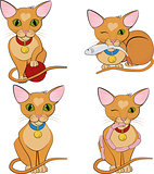 Set of cute ginger cats. Cartoon character.