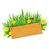 Vector Wooden Plank with Grass