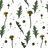 Seamless Vector illustration dandelions with leaves flower meadow. Summer flower natural season beautiful yellow dandelion.