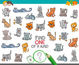 find one of a kind with cat animal character