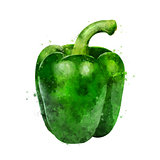Green paper on white background. Watercolor illustration