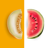 Slice of melon and watermelon. Vector illustration