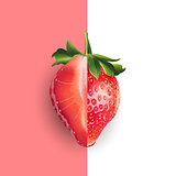 Strawberry. Vector illustration
