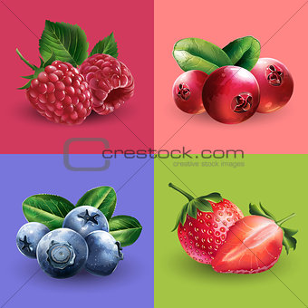 Raspberries, cranberries, blueberries and strawberries