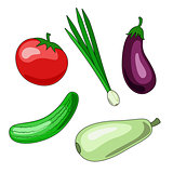 A set of vegetable icons. Vectron illustrations of tomato, cucum