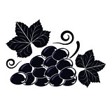 Vector illustration symbol of a Vine with black grapes and leave
