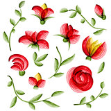 Watercolor vector floral elements