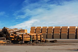 Logs and Plywood at Lumber Mill