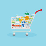 Red shopping basket filled with useful natural products.