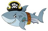 Pirate shark topic image 4