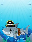 Pirate shark topic image 6