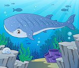 Whale shark theme image 2