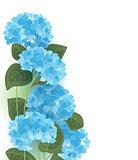Vector hydrangea flower