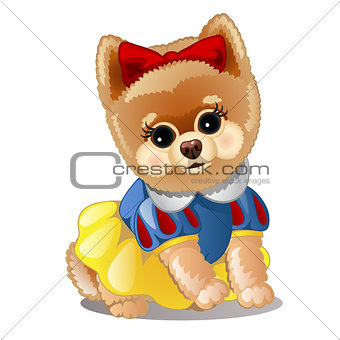 Little fluffy dog in clothes. Vector illustration.