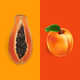 Papaya and apricot. Vector illustration