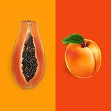 Papaya and apricot. Vector illustration