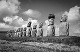 Moais statues, ahu Tongariki, easter island. Black and white pic